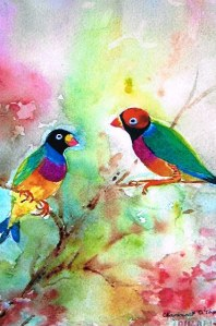 Gouldian Finches by Margaret O'Toole