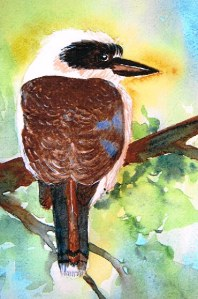 Kookaburra by Margaret O'Toole